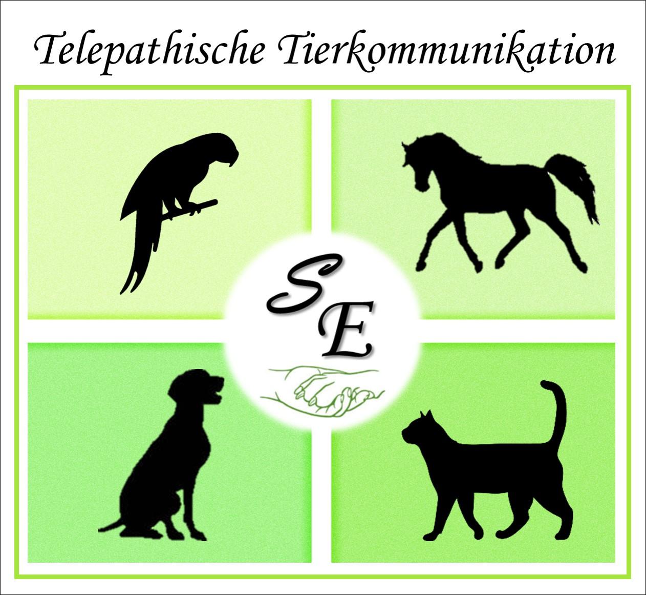 Telepathische Tierkommunikation – Sylvia Erben